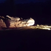 Dragon from Beowulf Legend, at West Stow Anglo Saxon Village Oct 2016